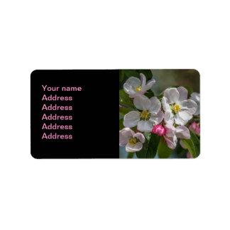 Kirschblüten-Blumen Adressaufkleber