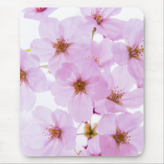Kirschblüten-Blumen in Tokyo Japan Mousepad