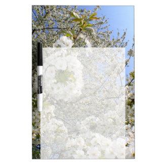 Kirschblüten, Frühling Memoboard