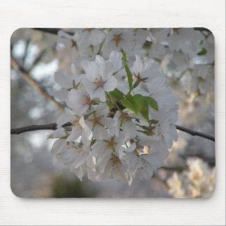 Kirschblüten Mousepad