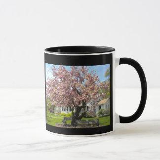 Kirschblüten-Tasse Tasse