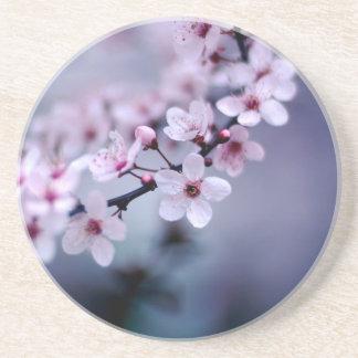 Kirschblüten Untersetzer