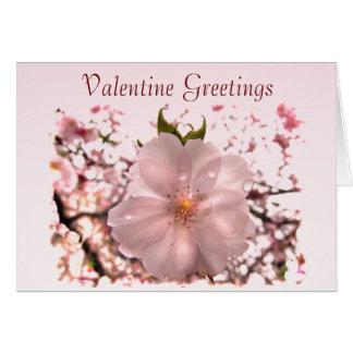 Kirschblüten-Valentinsgruß Karte