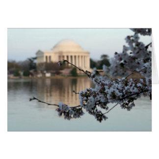 Kirschblüten-Washington DC Karte