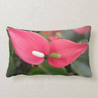Kissen - Lumbar - rote Blütenschweif-Zwillinge
