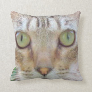 Kissen - Tabby-Katzen-Gesicht