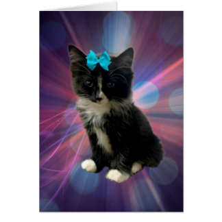 Kitten_Sparkle_Blue_Bow, _Small_Greeting_Card Karte