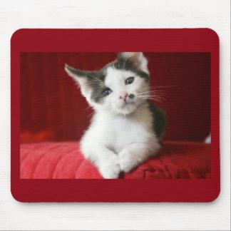 KittenNamed fantastisch Mauspad