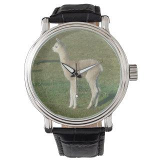 Kitz-Alpaka Cria Armbanduhr