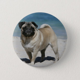Kitz-Mops am Strand Runder Button 5,7 Cm