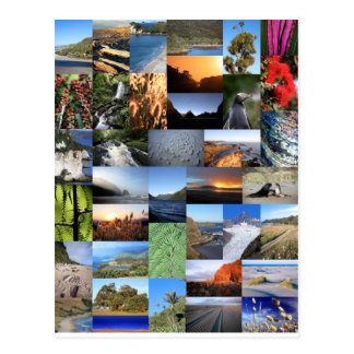 Kiwiana Neuseeland Natur landschaftlicher Montage Postkarte