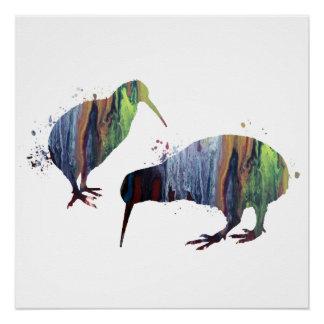 Kiwivögel Poster
