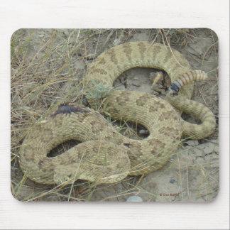 Klapperschlange des Grasland-R0020 Mousepad