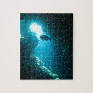 Klare blaue Höhle und Fische Puzzle