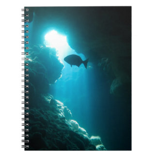 Klare blaue Höhle und Fische Spiral Notizblock