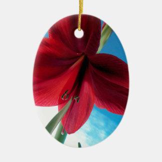 klare rote Blume der Amaryllis-108a Keramik Ornament