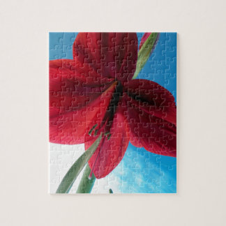 klare rote Blume der Amaryllis-108a Puzzle