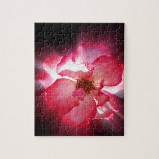 klare rote Blumenblätter Puzzle