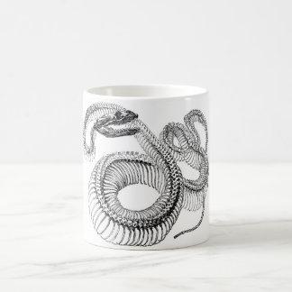 Klassische zoologische Radierung - Schlange Kaffeetasse