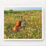 Klassischer Cello auf einem Gebiet der Wildblumen Mauspads