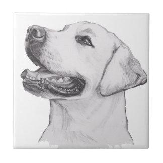 Klassisches Labrador-Retriever-Hundeprofil Keramikfliese