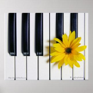 Klavier-Blume Poster