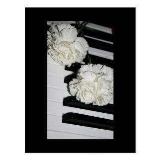 Klavier-oder Organ-Tastatur und weiße Gartennelken Postkarten