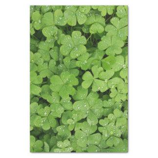 KleeblattSeidenpapier-Grünnatur Seidenpapier