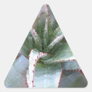 Kleine Agave Dreieckiger Aufkleber