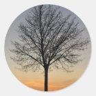 kleine Baumsonnenunterganglandschaft, Baum Runder Aufkleber