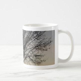 kleine Baumsonnenunterganglandschaft Baum Sonnenu