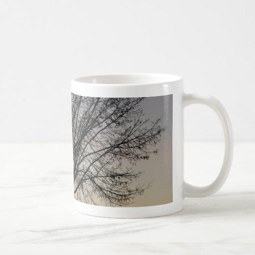 kleine Baumsonnenunterganglandschaft, Baum Sonnenu Kaffee Tassen