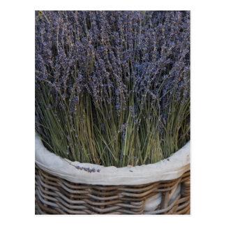 Kleine Blumensträuße des Lavendels Postkarte