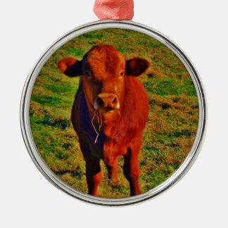 Kleine Brown-Kuh-hellgrünes Gras Silbernes Ornament
