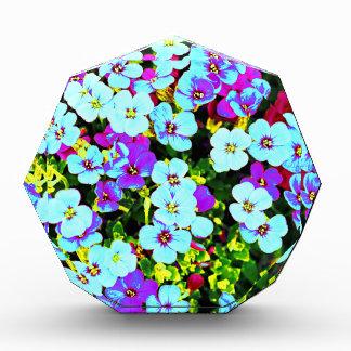Kleine bunte Blumen Auszeichnung