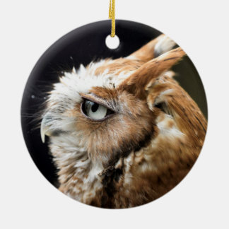Kleine Eule Rundes Keramik Ornament
