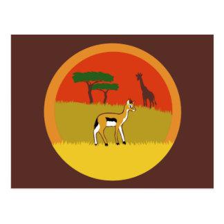 Kleine Gazelle Postkarte
