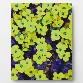 Kleine gelbe Blumen Fotoplatte