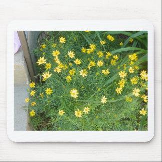 Kleine gelbe Blumen mit dem Grün Mousepad