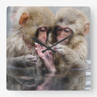 Kleine heiße Quellen der Affe- , Japan Quadratische Wanduhr