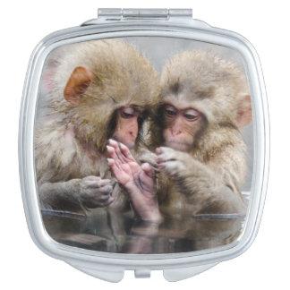 Kleine heiße Quellen der Affe-|, Japan Taschenspiegel