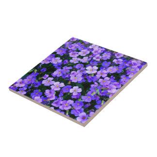 Kleine lila Blumen Kleine Quadratische Fliese