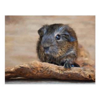 Kleine Meerschweinchen-Malerei Postkarten