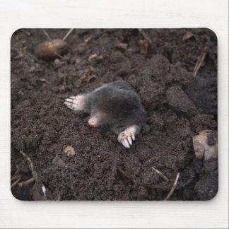 Kleine Mole Mauspads