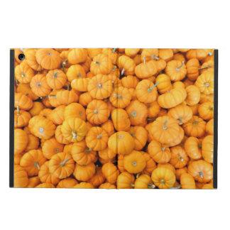 Kleine orange Ernte-Kürbise zünden iPad Air ケース an