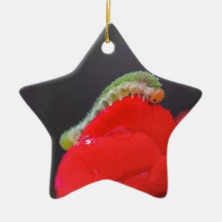 Kleine Raupe Keramik Stern-Ornament