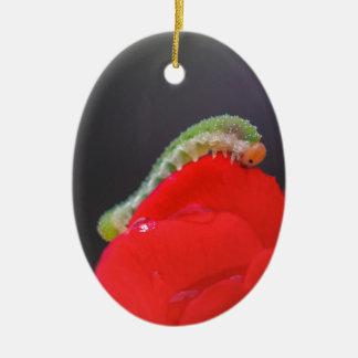 Kleine Raupe Ovales Keramik Ornament