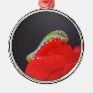 Kleine Raupe Rundes Silberfarbenes Ornament