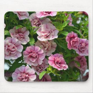 Kleine rosa Petunien im Frühjahr Mauspads