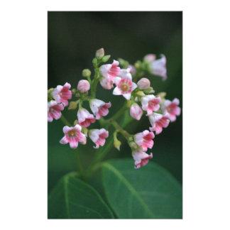 Kleine rosa Wildblumen Briefpapier